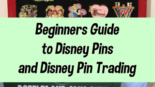 Beginners Guide to Disney Pins and Disney Pin Trading