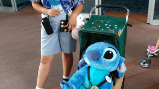 Disney Pin Trading Etiquette   Do's and Dont's of Pin Trading