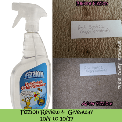 Fizzion-review-giveaway
