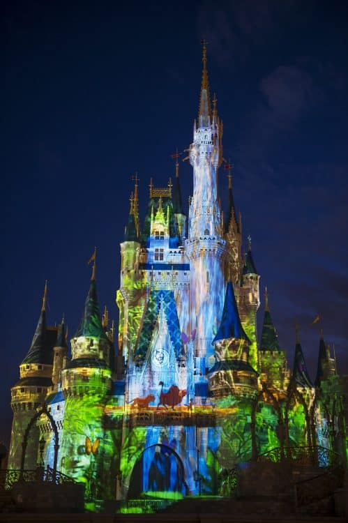 Celebrate the Magic Cinderella Castle Projection Show