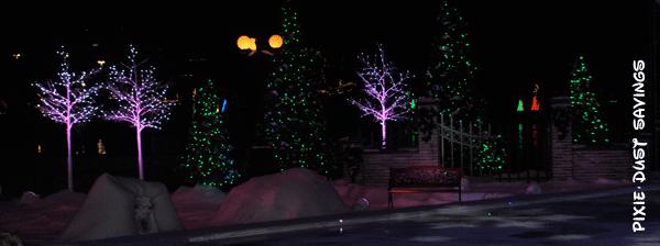 sea-world-christmas-lights