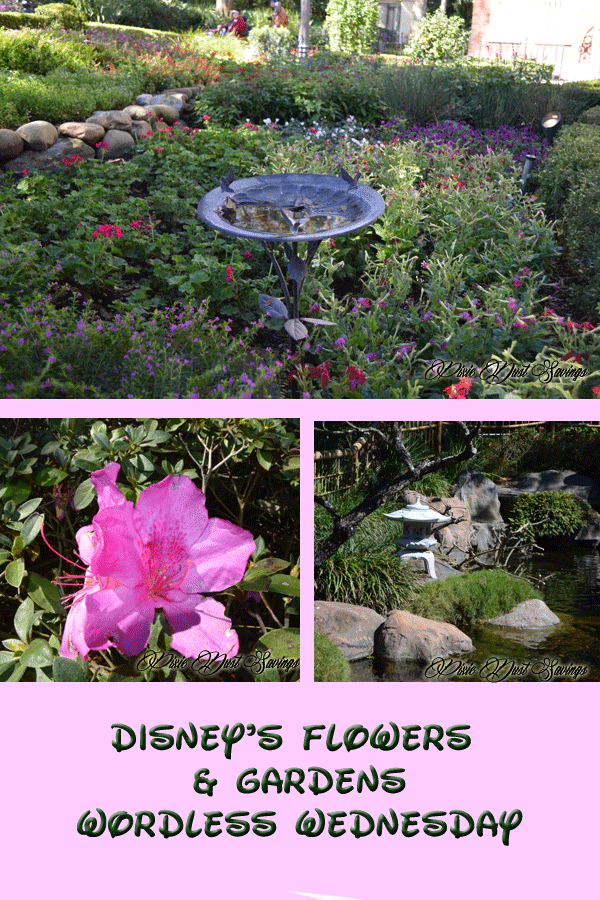 Flowers and Gardens at Epcot- Wordless Wednesday