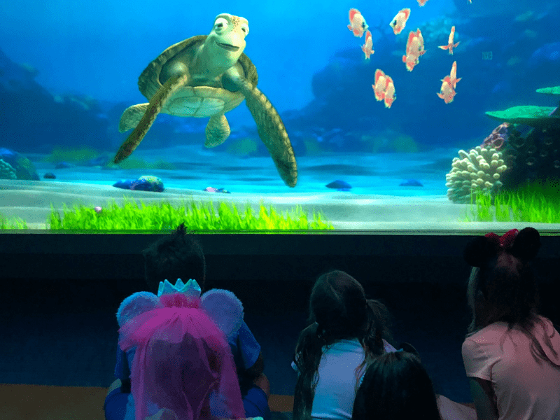 Turtle Talk with Crush at Epcot kids ask questions
