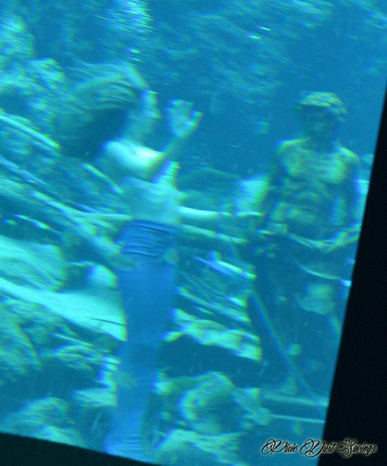 Weeki Wachee Little Mermaid Show