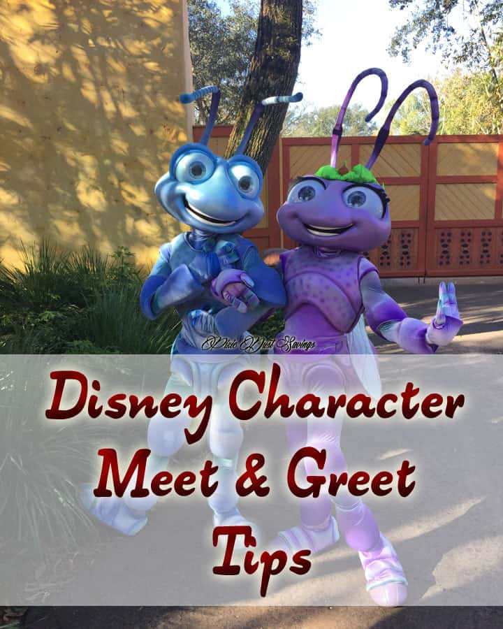 disney character meet and greet times disneyland