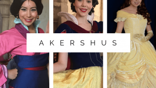 Akershus Review | Princess Storybook Character Dining