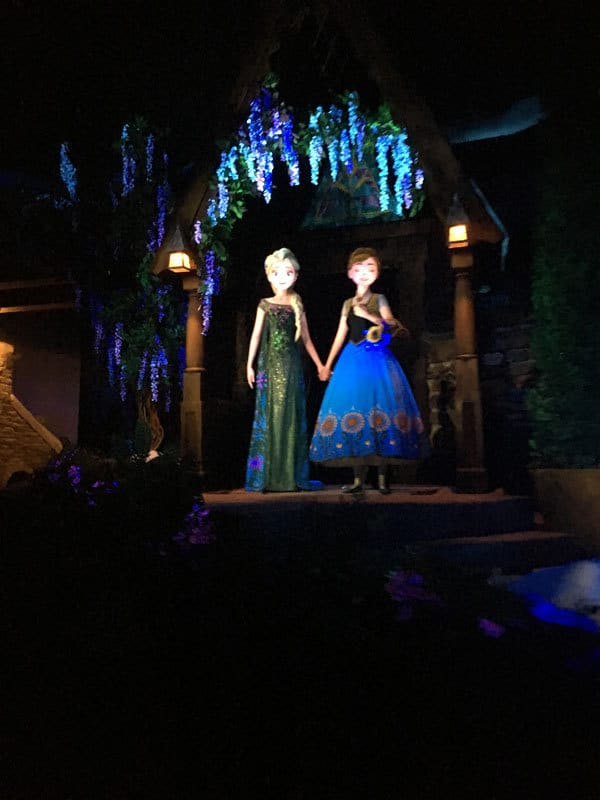 Popular Epcot Ride- Frozen Ever After