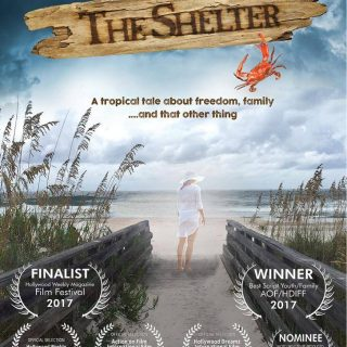 The Shelter | A Tropical Tale Benefitting Brevard County, Florida