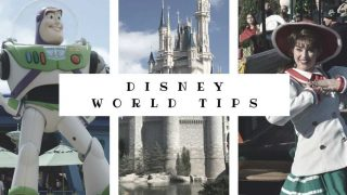 101 of My Top Disney World Tips & Tricks