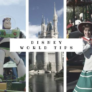 Top Disney World Tips