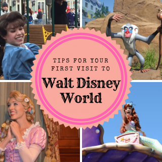 The Truth About Your First Visit to Disney World