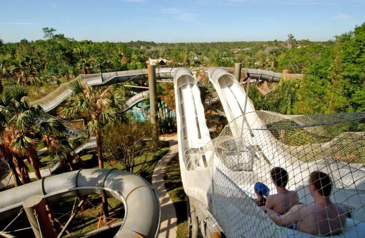 Disney World Thrill Rides Water Parks