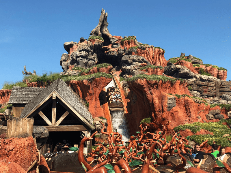 Disney World Thrill Rides Splash Mountain