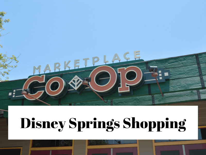 4778e7aa0948f The Best Disney Springs Stores to Visit