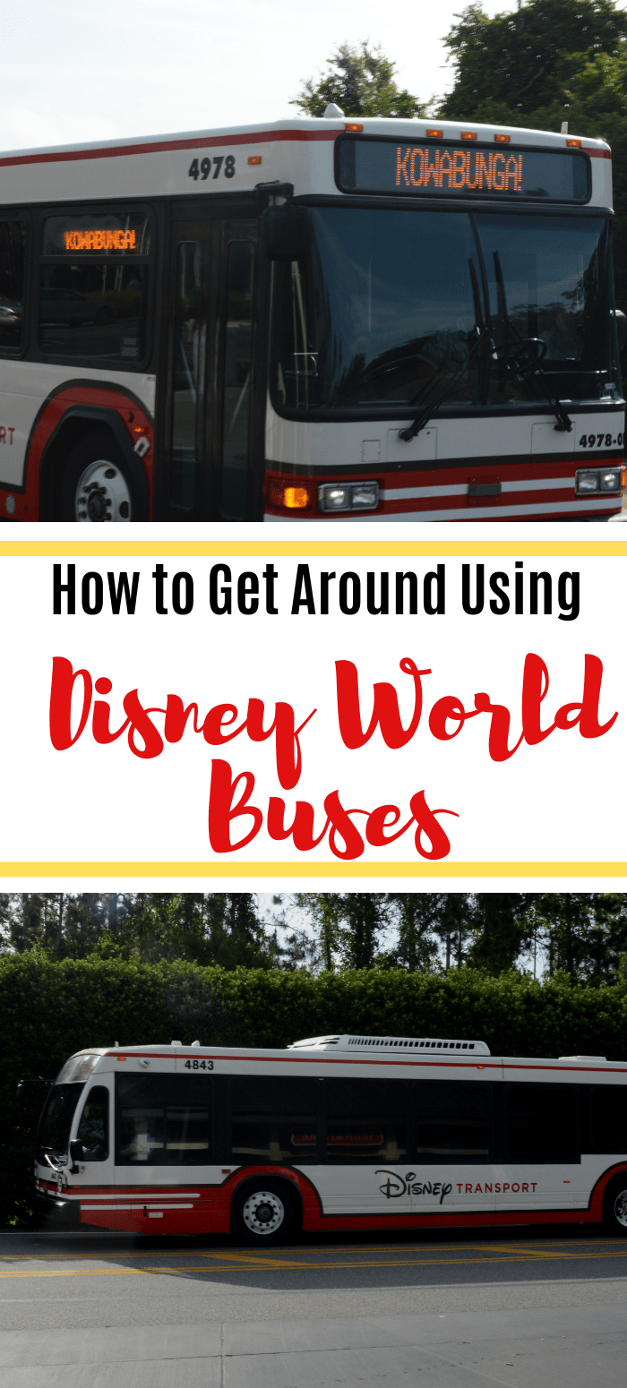 Complete Guide to Disney World Buses