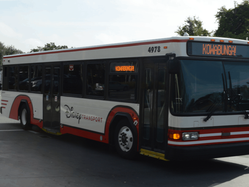 Complete Guide To The Disney World Buses
