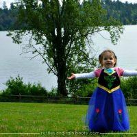 FROZEN Inspired Princess Anna Dress Up Costume (Apron)