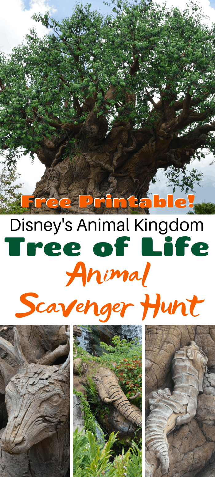 Tree of Life Printable Scavenger Hunt