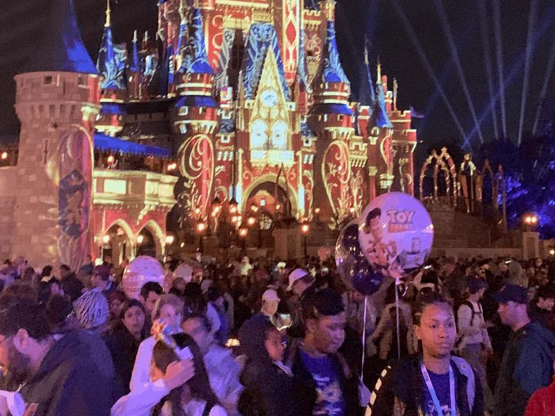 Crowded at the Disney Castle