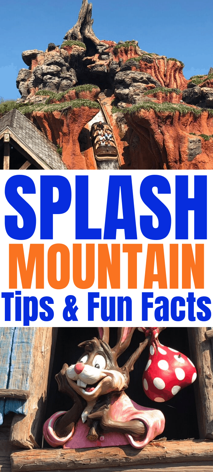 Splash Mountain Tips and Fun Facts