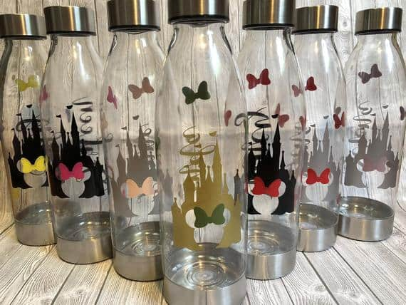 Disney inspired Plastic Water Bottle with Stainless Steel accents